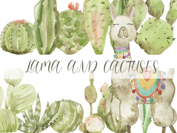 Print on Demand: Llama and Cactuses Graphic Illustrations By laffresco04