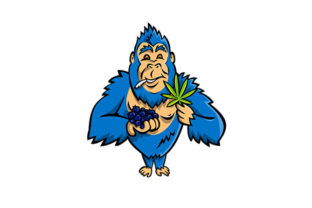 Print on Demand: Gorilla Holding Blueberry and Cannabis Graphic Illustrations By patrimonio