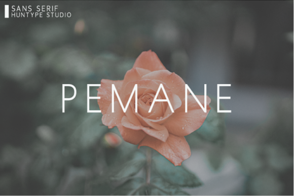 Print on Demand: Pemane Sans Serif Font By Huntype