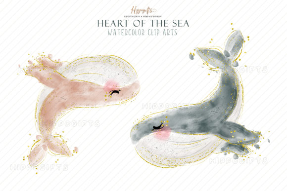 Watercolor Whale Cliparts Graphic Download