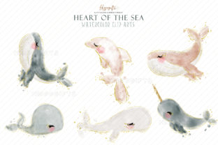 Watercolor Whale Cliparts Graphic Illustrations By Hippogifts 4