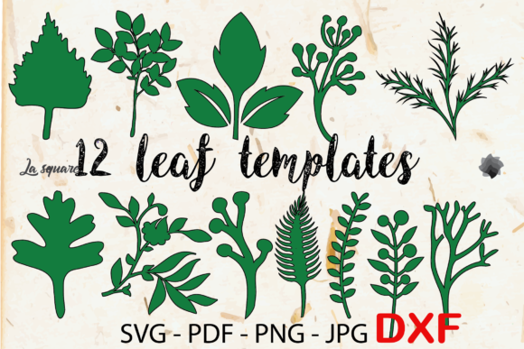 Download Free Lalia 19 Paper Flowers Templates Graphic By Lasquare Info for Cricut Explore, Silhouette and other cutting machines.