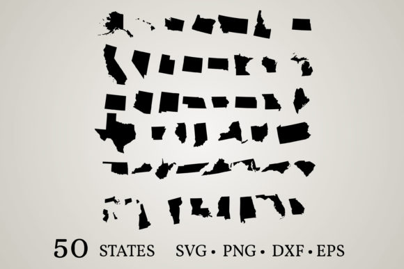 50 States of the United States Graphic