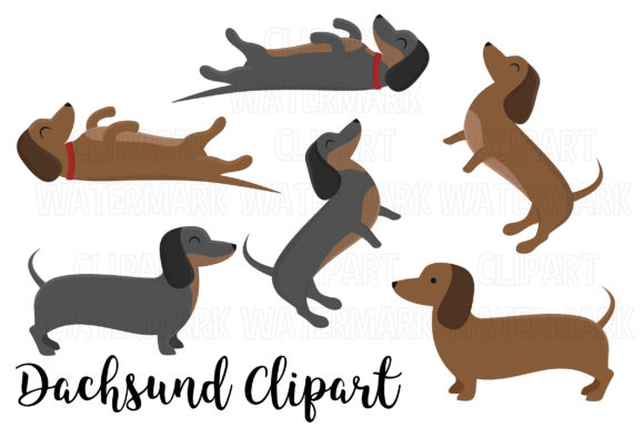 Dachshuns Clipart Graphic Illustrations By magreenhouse