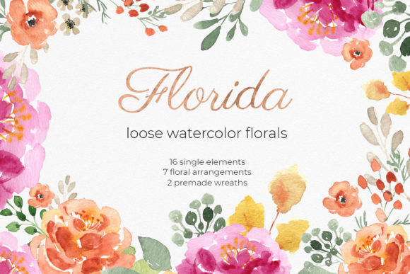 Florida Watercolor Floral Cliparts Graphic Illustrations By RedDotsHouse