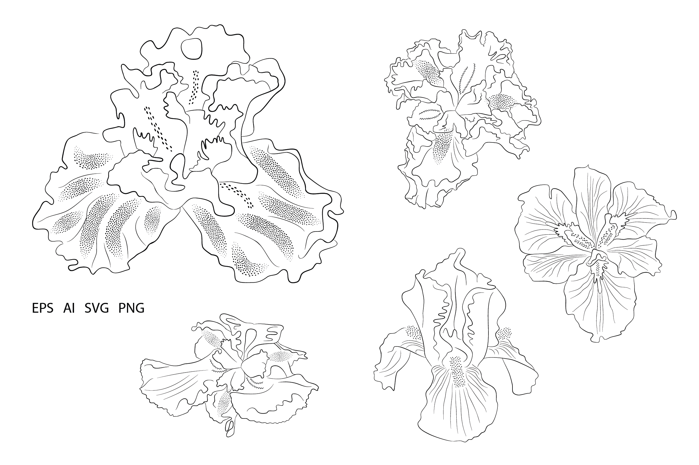Download Free Flower Irises Illustration Element Graphic By Embart Creative Fabrica for Cricut Explore, Silhouette and other cutting machines.