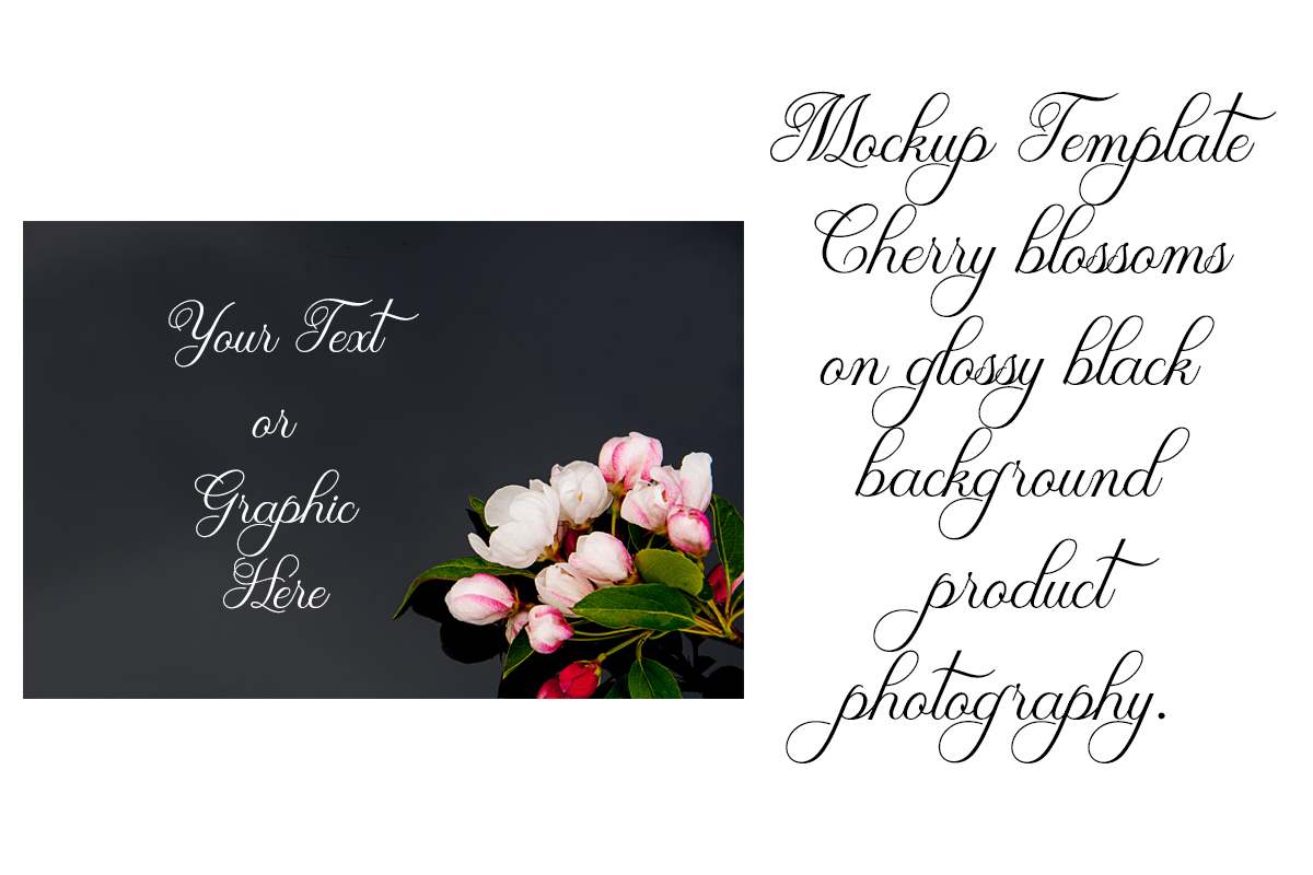 Download Free Mockup Template Cherry Blossoms On Black Graphic By A Design In for Cricut Explore, Silhouette and other cutting machines.