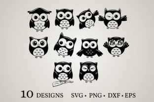 Owl Vector Bundle  Graphic Crafts By Euphoria Design