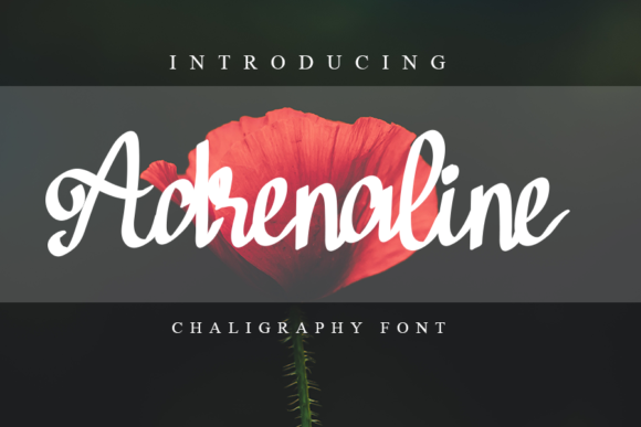 Print on Demand: Adrenaline Script & Handwritten Font By Inermedia STUDIO