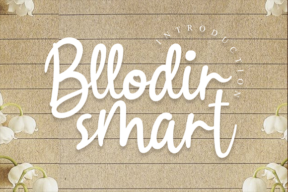 Download Free Bllodir Smart Font By Andikastudio Creative Fabrica for Cricut Explore, Silhouette and other cutting machines.