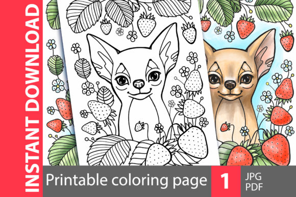 Chihuahua. Cute Dog Coloring Page Graphic Coloring Pages & Books By NataliMyaStore