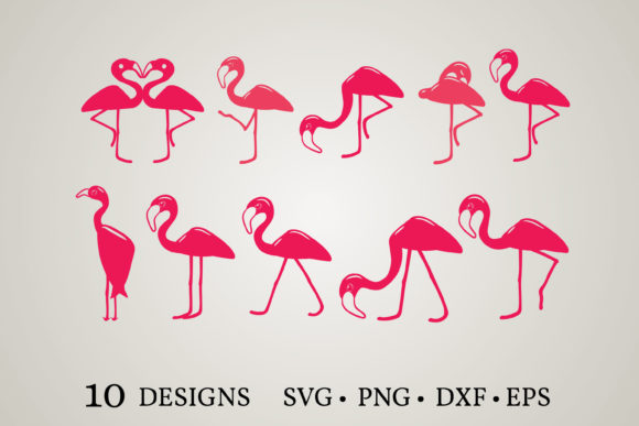 Flamingo Bundle  Graphic Print Templates By Euphoria Design