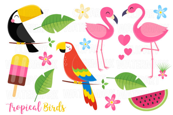 Tropical Birds Clipart Graphic Illustrations By magreenhouse