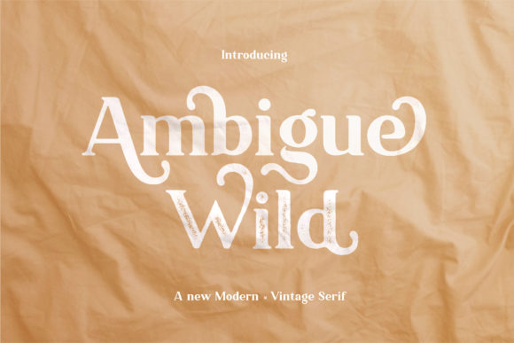 Print on Demand: Ambigue Wild Sans Serif Font By Wandery Supply
