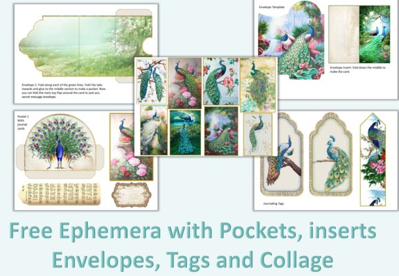 Download Free Peacock Backgrounds And Ephemera Graphic By The Paper Princess for Cricut Explore, Silhouette and other cutting machines.