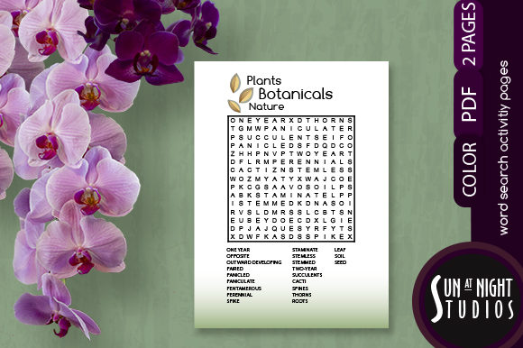 Plants Word Search Activity Graphic Teaching Materials By Sun At Night Studios