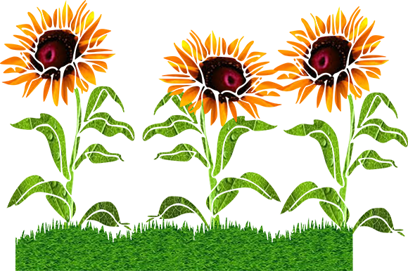 Download Free Sunflowers Graphic By Arts4busykids Creative Fabrica SVG Cut Files