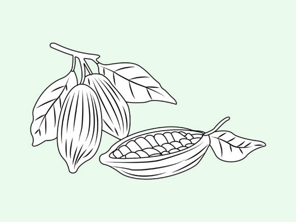 Download Free Cocoa Fruit Outline Character Vector Graphic By 1tokosepatu for Cricut Explore, Silhouette and other cutting machines.