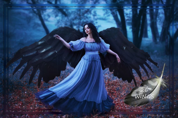 Black Wings Overlays Graphic Nature By FaeryDesign