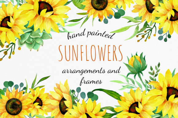 Sunflowers Watercolor Clipart  Graphic Illustrations By RedDotsHouse