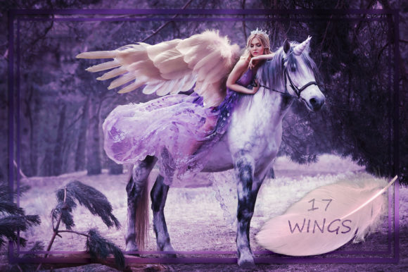 White Wings Overlays Gráfico Naturaleza Por FaeryDesign