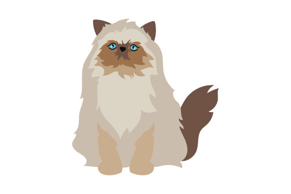 Download Free Himalayan Cat Svg Cut File By Creative Fabrica Crafts Creative for Cricut Explore, Silhouette and other cutting machines.