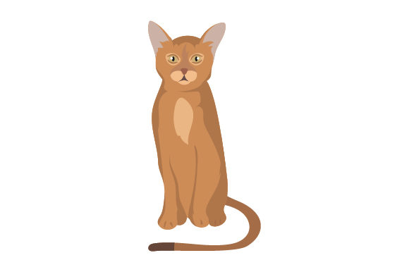 Download Free Abyssinian Cat Svg Cut File By Creative Fabrica Crafts for Cricut Explore, Silhouette and other cutting machines.
