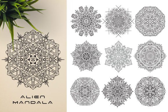 300 Mandala Ornaments Graphic Illustrations By pixaroma - Image 10
