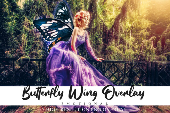 Print on Demand: 57 Colorful Butterfly Wing Overlays Gráfico Fondos Por 3Motional