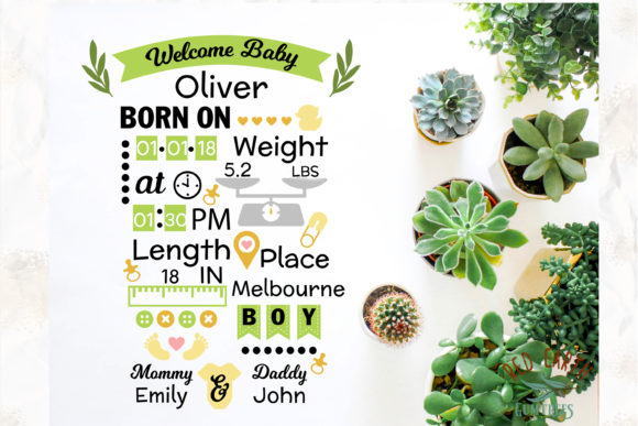 Baby Announcement Chart Bundle Graphic Crafts By redearth and gumtrees - Image 10