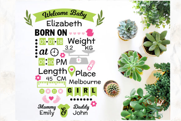Baby Announcement Chart Bundle Graphic Crafts By redearth and gumtrees - Image 12