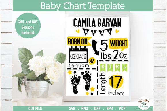 Baby Announcement Chart Bundle Graphic Crafts By redearth and gumtrees - Image 3