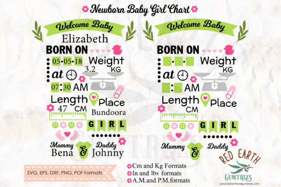 Baby Announcement Chart Bundle Graphic Crafts By redearth and gumtrees - Image 9