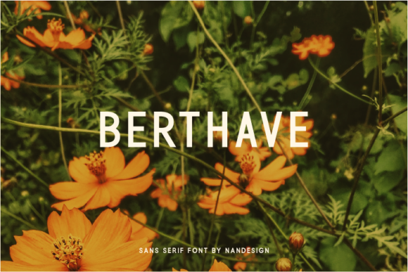 Print on Demand: Berthave Sans Serif Font By Nan Design