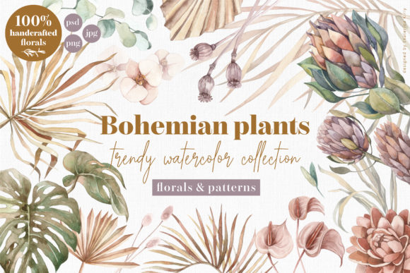 Bohemian Plants - Trendy Watercolors Graphic Illustrations By ekaterinakiriy