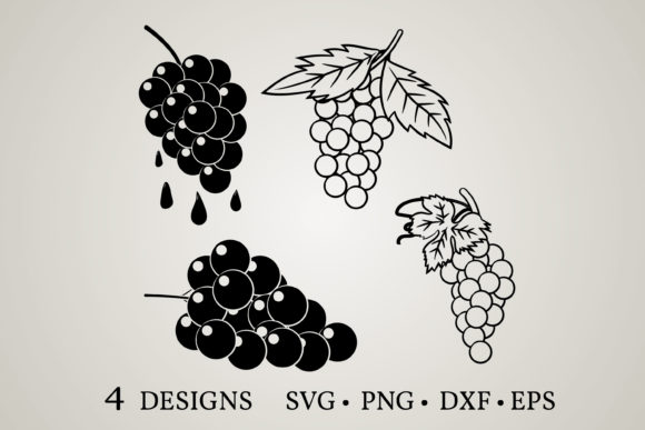 Download Free Grape Bundle Graphic By Euphoria Design Creative Fabrica for Cricut Explore, Silhouette and other cutting machines.