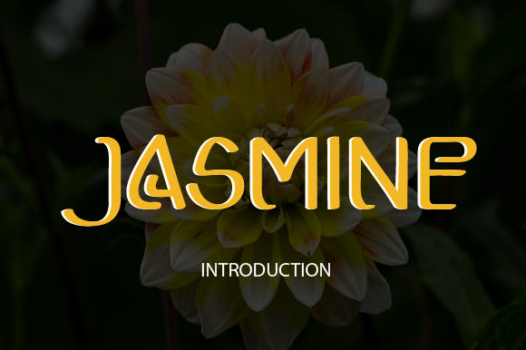 Print on Demand: Jasmine Display Font By mizanstudio