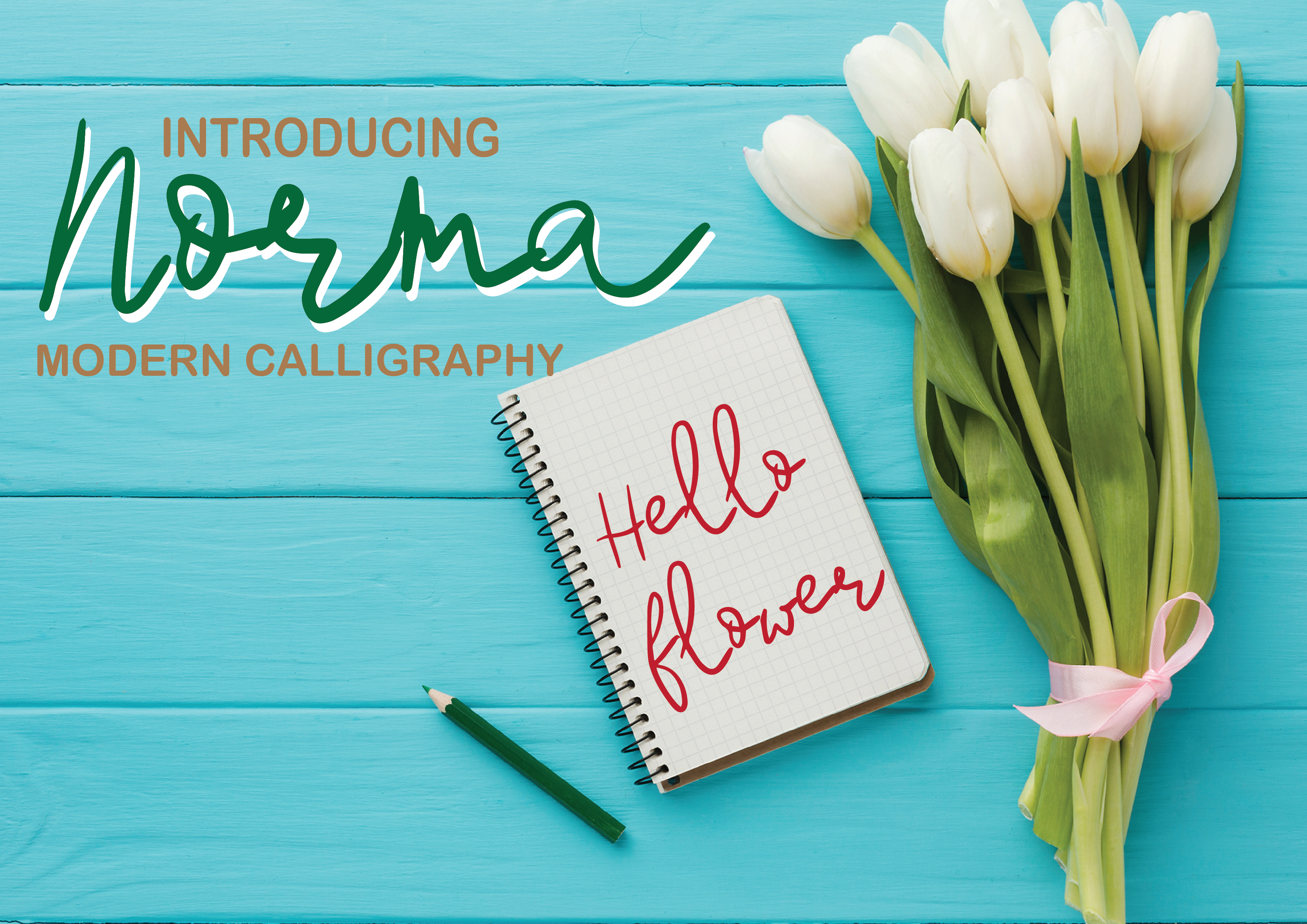 Download Free Norma Font By Patrick Design Creative Fabrica for Cricut Explore, Silhouette and other cutting machines.