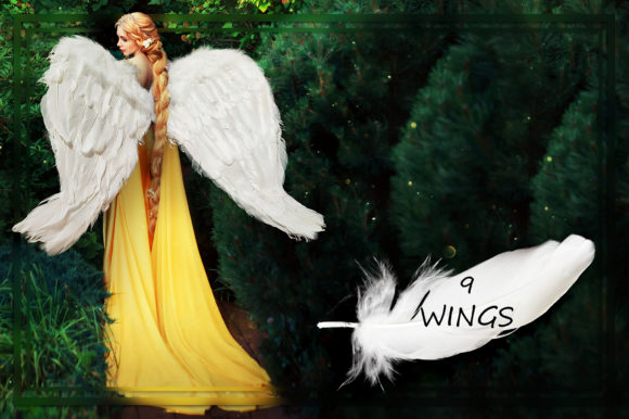 White Wings Overlays Graphic Nature By FaeryDesign