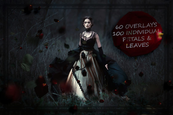 Blood Rose Petals and Black Leaves Overlays Graphic Nature By FaeryDesign