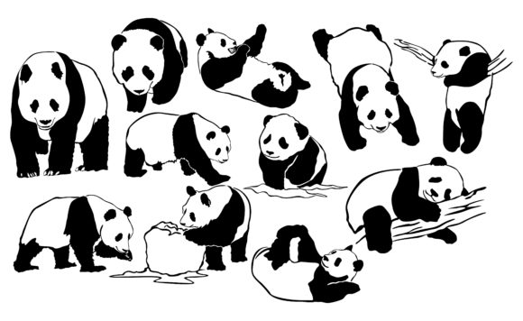Print on Demand: Panda with Line Art Style Bundle Graphic Crafts By Arief Sapta Adjie