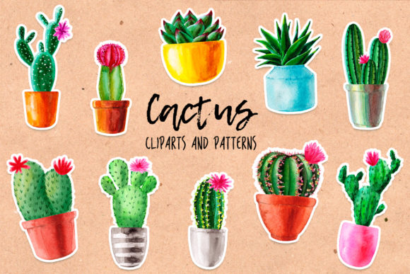 Watercolor Cactus. Cacti Patterns Graphic Objects By Slastick