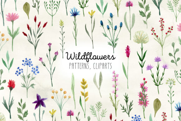 Watercolor Wildflowers. Cliparts Graphic Objects By Slastick