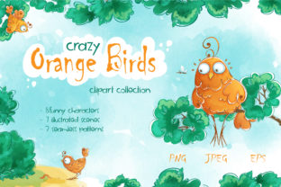 Crazy Orange Birds Graphic Illustrations By Maycat