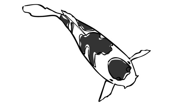 Gray Koi Fish with Line Art Style Graphic Item
