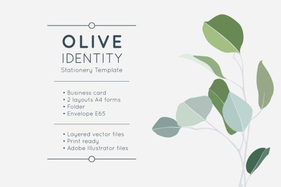 Download Free Olive Identity Stationery Template Graphic By Krisjanis Creative Fabrica for Cricut Explore, Silhouette and other cutting machines.