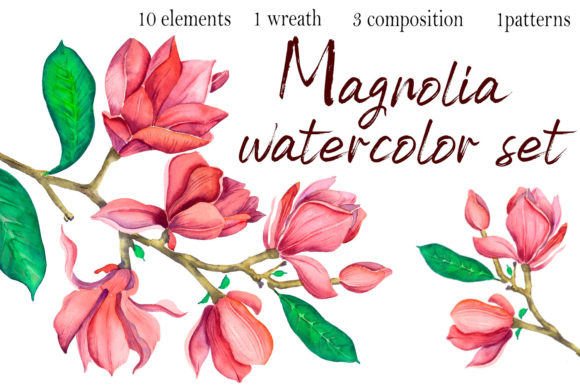 Watercolor Magnolia Flowers Clipart Graphic Illustrations By ElenaZlataArt