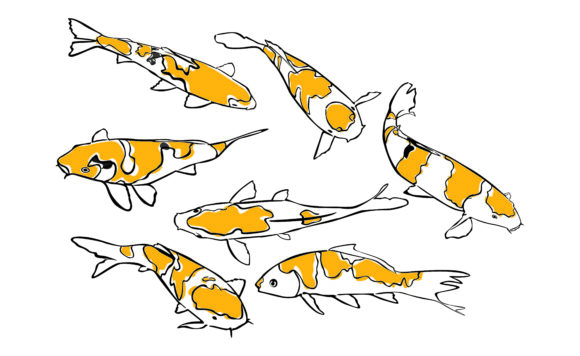 Print on Demand: Yellow Koi Fish with Line Art Style Set Graphic Crafts By Arief Sapta Adjie