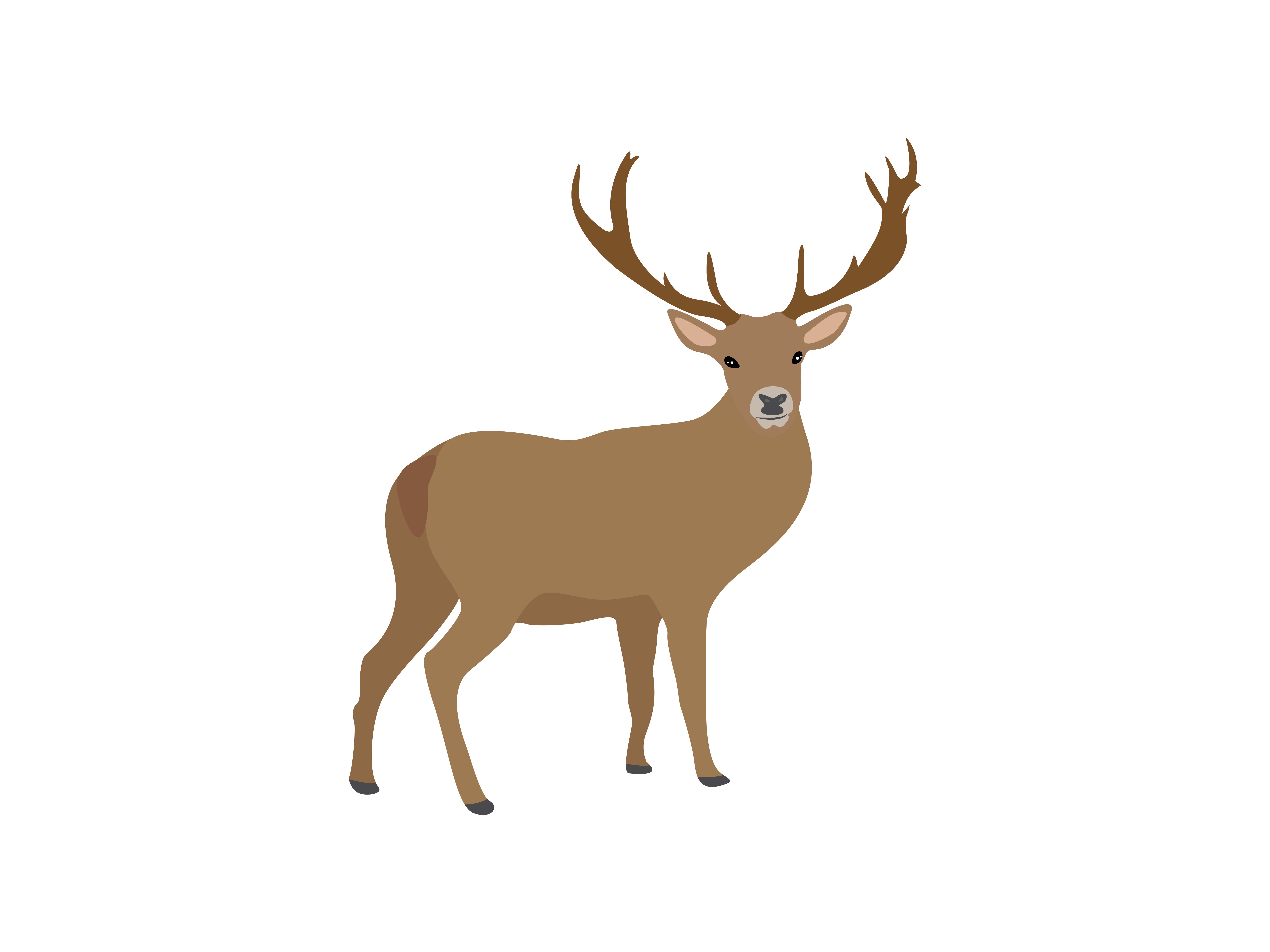 Download Free Deer Animal Graphic By Archshape Creative Fabrica for Cricut Explore, Silhouette and other cutting machines.