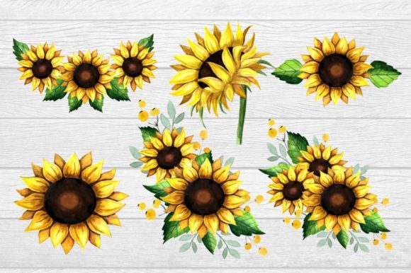 Rustic Sunflower Clipart Watercolor (Graphic) by Magic world of design ·  Creative Fabrica